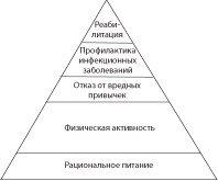 Рисунок 2. Иерархия элементов здорового образа жизни