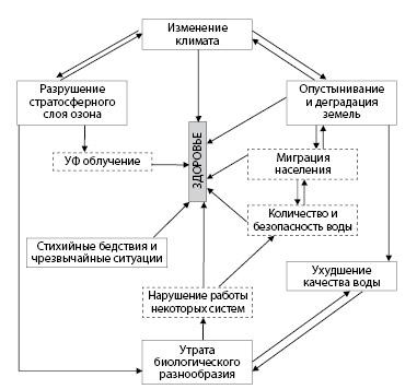 Рисунок 3.1. Влияние экологических факторов на здоровье человека (на основании публикаций ВОЗ)