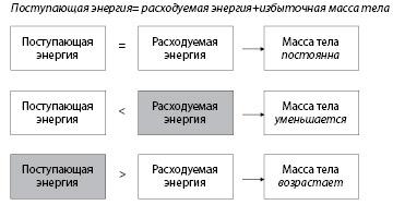 Рисунок. 3.3. Баланс энергии и масса тела